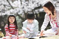 桜の下で弁当を開ける親子