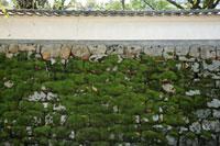 石垣の塀と苔