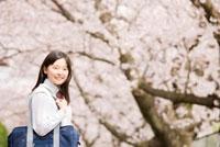 桜並木の下で振り返る女子中学生