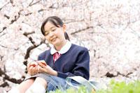桜の下に座り単語を覚える女子中学生