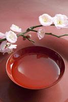 梅の花と盃