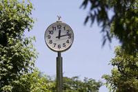 公園のアナログ時計