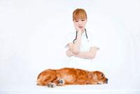 診察中のキャバリアと動物看護師