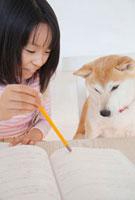 柴犬と一緒に勉強する女の子