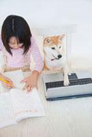 勉強をする女の子とパソコンを使う柴犬