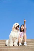 ゴールデンドゥードルと階段に座って空を指差す女の子