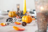 ハロウィーンの飾り付け 11031065489| 写真素材・ストックフォト・画像・イラスト素材|アマナイメージズ