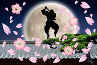 忍者シルエットと桜吹雪
