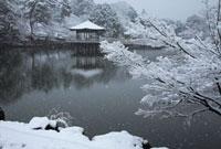 雪の奈良公園浮御堂