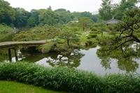 池と中之島を配した庭園の風景