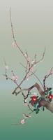 梅と椿 11031075341| 写真素材・ストックフォト・画像・イラスト素材|アマナイメージズ