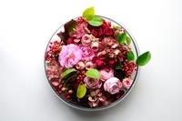 白テーブルの上のバラ 11031077518| 写真素材・ストックフォト・画像・イラスト素材|アマナイメージズ