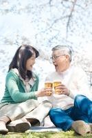 桜の下でビールを飲むシニアカップル 11031079985| 写真素材・ストックフォト・画像・イラスト素材|アマナイメージズ