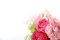 窓辺の花 11031080028| 写真素材・ストックフォト・画像・イラスト素材|アマナイメージズ
