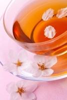 桜と紅茶 11031080684| 写真素材・ストックフォト・画像・イラスト素材|アマナイメージズ
