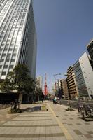 ビルの間に見える東京タワー