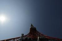 太陽と東京タワー