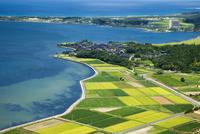久美浜湾の田園風景