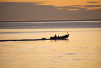 漁に出る漁船