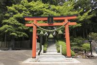 霊山寺の鳥居