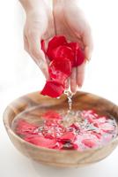 水に浮かべたバラの花ビラをすくう女性の手
