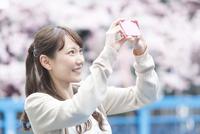 桜をスマートフォンで撮る女性