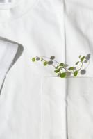 Tシャツとポケットの中の緑の葉っぱ