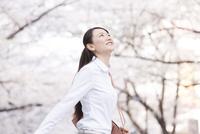 桜並木の下を歩く女性