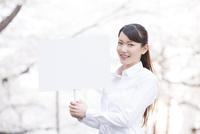 桜並木の下でプラカードを持つ女性
