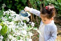 花に水を遣る女の子
