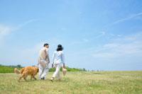 草原を犬と散歩をするシニア夫婦の後姿