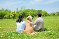 草原に座るシニア夫婦の後姿と振り返る犬