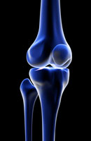 bones of knee 11037002503| 写真素材・ストックフォト・画像・イラスト素材|アマナイメージズ