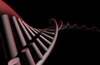DNA 11037006698| 写真素材・ストックフォト・画像・イラスト素材|アマナイメージズ