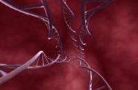 DNA 11037006816| 写真素材・ストックフォト・画像・イラスト素材|アマナイメージズ