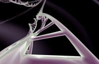 DNA 11037007028| 写真素材・ストックフォト・画像・イラスト素材|アマナイメージズ