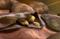 Merozoites of malaria 11037008656  写真素材・ストックフォト・画像・イラスト素材 アマナイメージズ