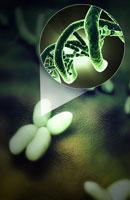 Chromosomes 11037009460| 写真素材・ストックフォト・画像・イラスト素材|アマナイメージズ