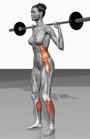 Barbell squat exercises (Part 2 of 2)