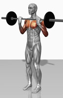 Biceps curl (Part 1 of 2)