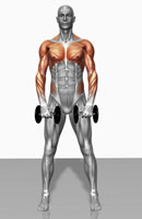 Upright row exercise (Part 2 of 2)
