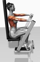 Lever bench press
