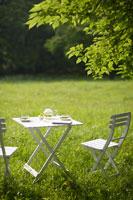 新緑の中のテーブルセッティング