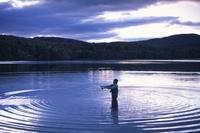 早朝にフライフィッシングする人物と水面の波紋 11038012352| 写真素材・ストックフォト・画像・イラスト素材|アマナイメージズ