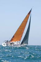 Yacht with yellow sail competes in team sailing event