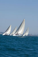 Four yachts compete in team sailing event