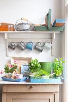 Cups and trays on kitchen dresser 11044012136| 写真素材・ストックフォト・画像・イラスト素材|アマナイメージズ
