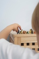 Boy arranging dinosaurs figurines close-up back view