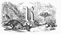文字Rと小鹿と根菜がある静物(イラスト)