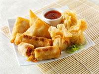 Spring rolls and wontons with dip (Asia)